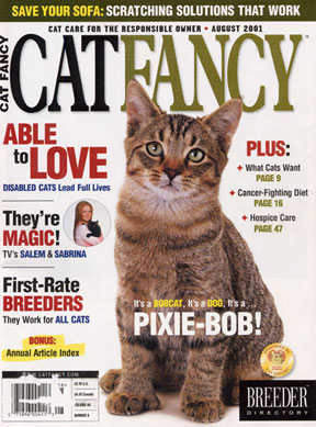 Our Pixiebob kitten, Special Agent Fourby, on the cover of Cat Fancy, Aug. 2001